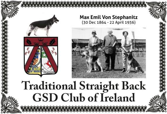 Homepage | Alsace Royale German Shepherds - Straight Back